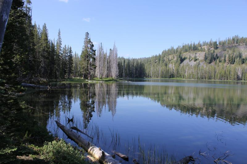 Caribou Wilderness 09/10
